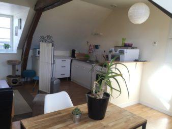 Appartement T2 à louer, Châteaugiron 40m²  au sol